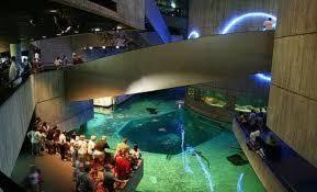 Inside Nat Aqua